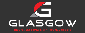mini specialist garage logo