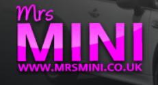 mini specialist logo